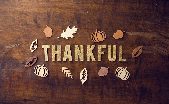 Thankful by-pro-church-media-441073